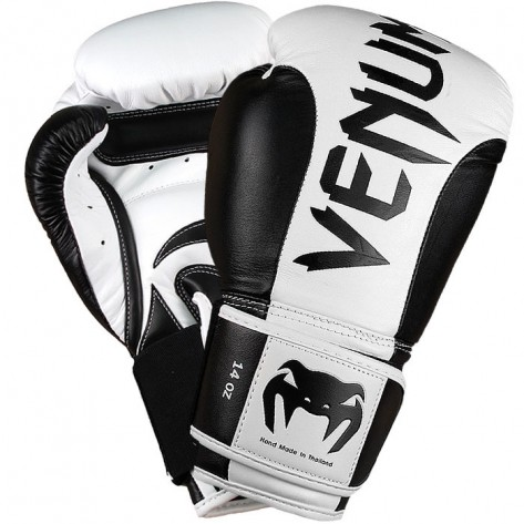 Venum Absolute Boxe